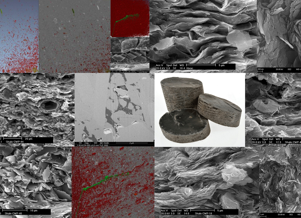 From microscopic pore structures to transport properties in shales