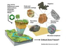 Clays in the Critical Zone: soils, weathering and elemental cycling